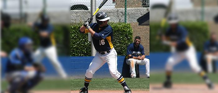 Fastpitch Softball Bat - Choosing The Best One