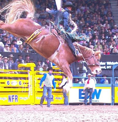 Do you want to watch National Finals Rodeo online live stream